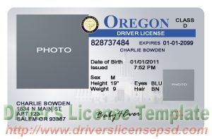 Drivers License Fake Drivers License Drivers License PSD - Free drivers license template photoshop