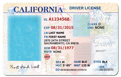 Lostroad Psd License Editable Download California Template - S Driver