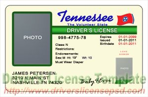 Tn drivers license pictures to pin on pinterest pinsdaddy for Tennessee drivers license template